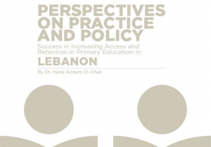 Perspectives on Practice and Policy - LEBANON